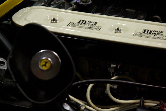 IMGP0266.JPG